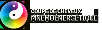 Coupe Mnémoénergétique